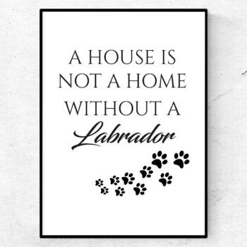 a house is not a home without a labrador poster tavla hund
