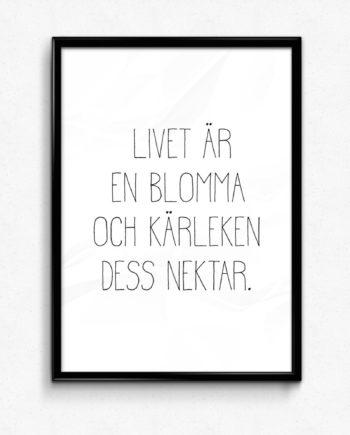 Livet är en blomma och kärleken dess nektar
