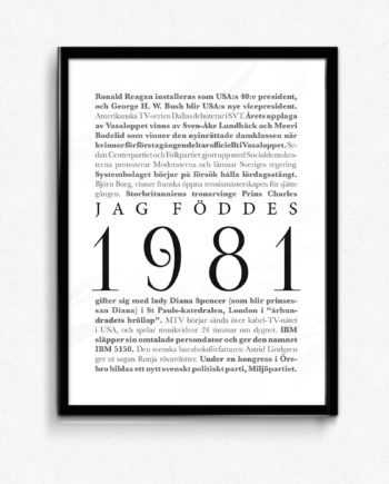 1981 poster
