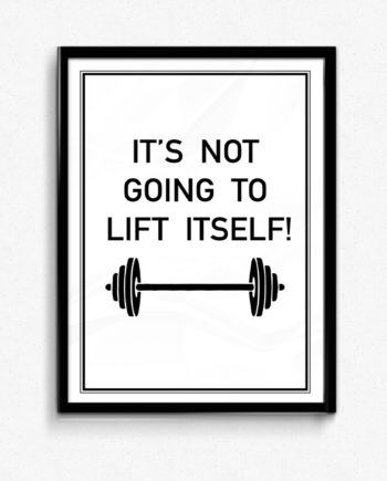 It's not going to lift itself gym poster
