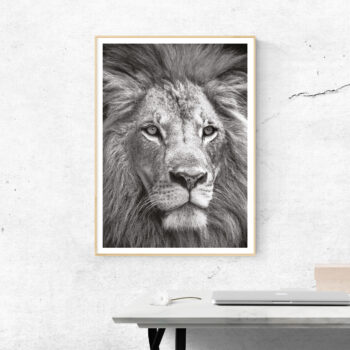 the lion king lejon poster