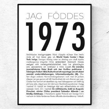 1973 modern poster