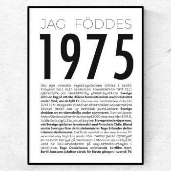 1975 modern poster